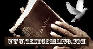 www.textobiblico.com.br